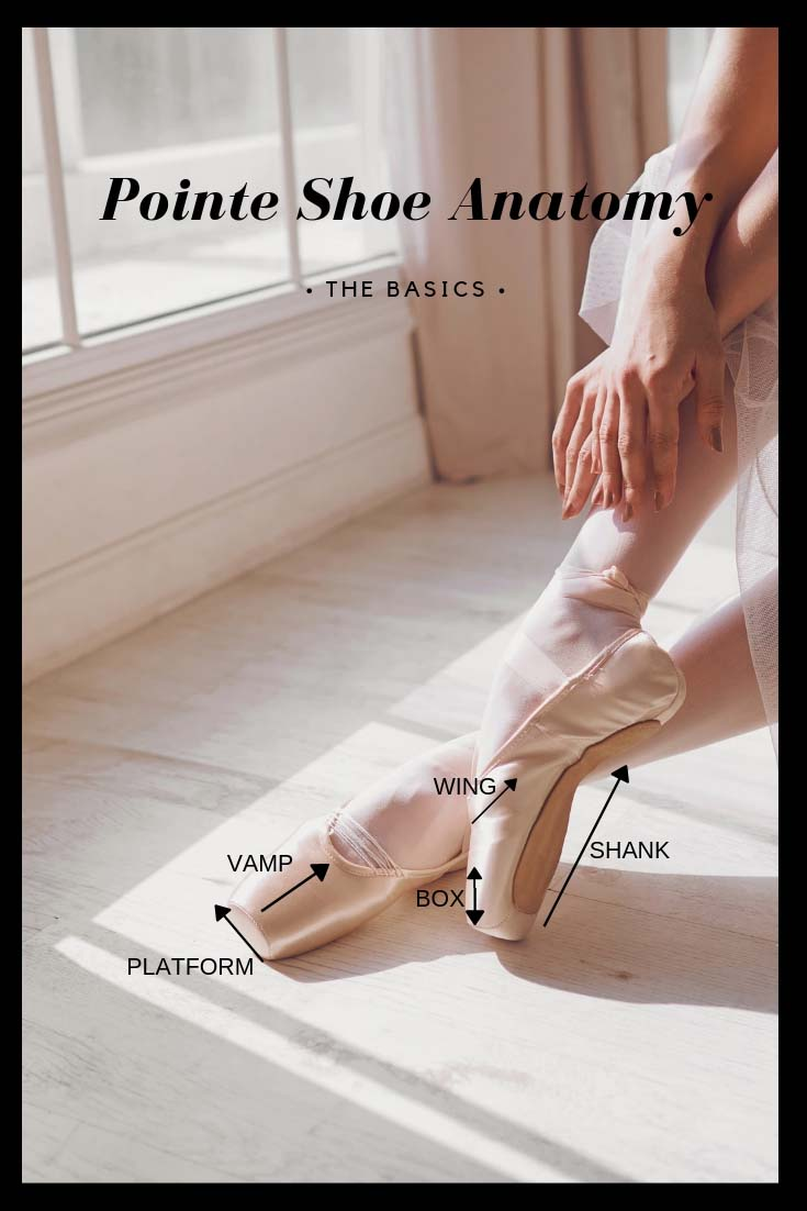 Basics of Pointe Shoe Fittings