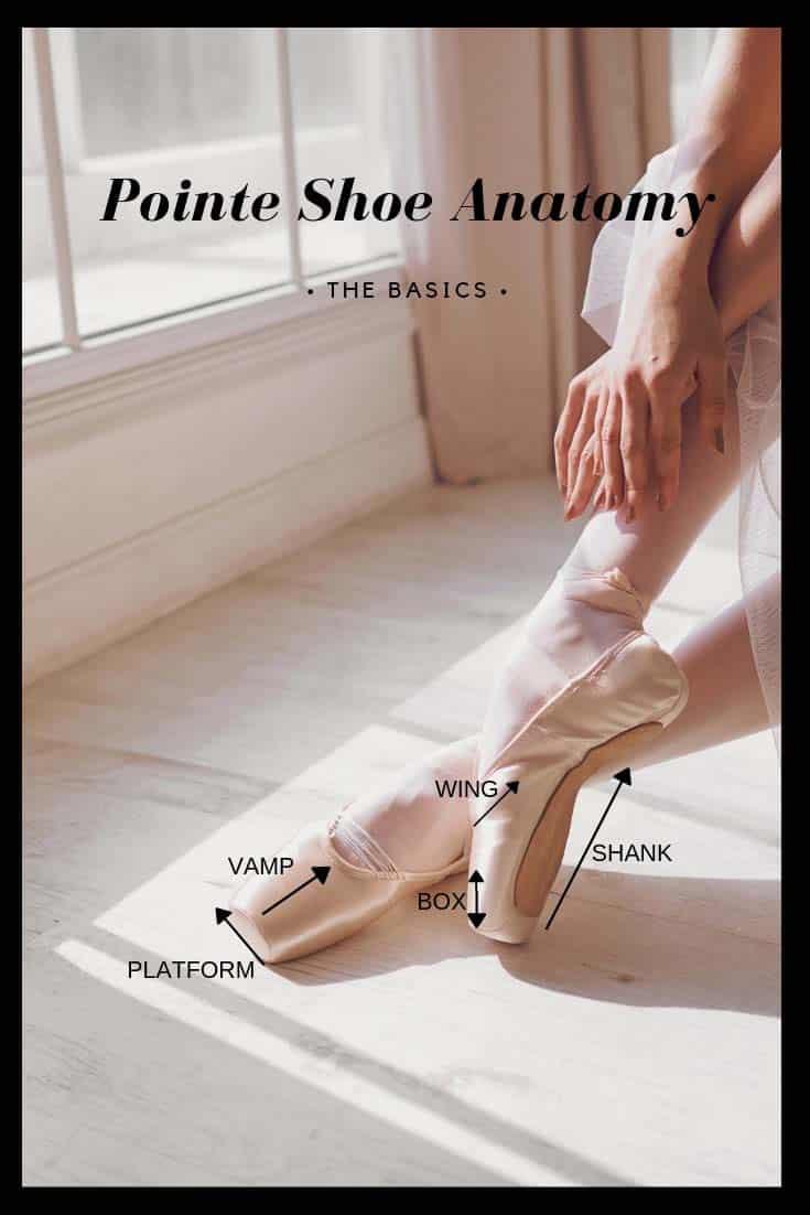 Basics of Pointe Shoe Fittings