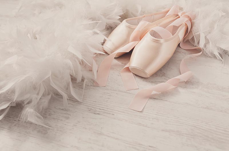 Ballet Shoes with Feathers
